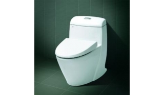 Bệt toilet Inax C-909VN